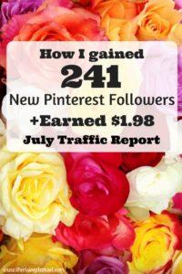 My Fourth Blog Traffic Report - The Rising Damsel